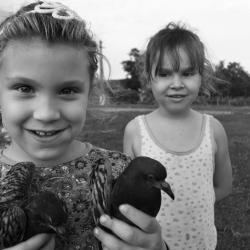 La petite fille aux oiseaux (Roumanie)