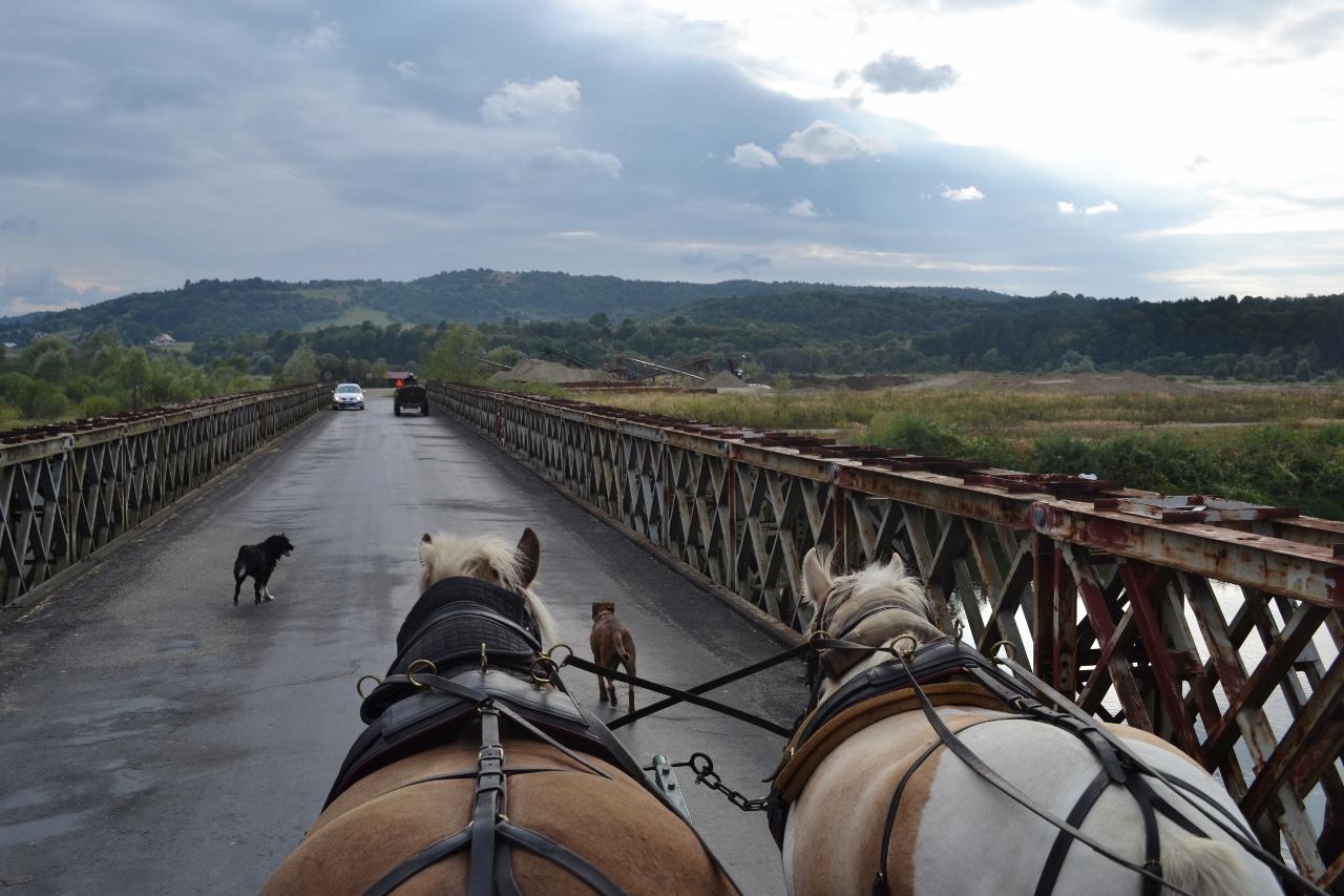 Carpates (Pologne)